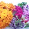 Flores comestibles mixtas