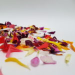 Mix de pétalos de flores comestibles