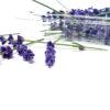Bandeja de flores de lavanda