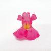 boca de dragón rosa