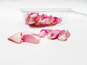 petalos de rosa web