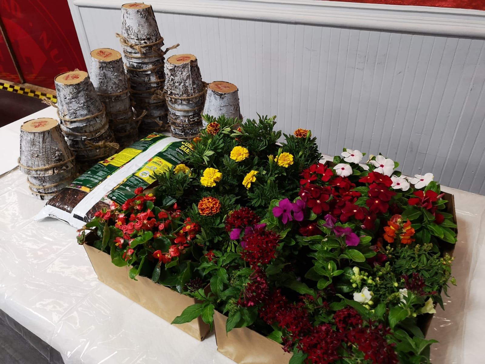 Una de las secciones del taller era cuidar las plantas desde la tierra