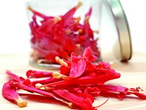 Lioflor Salvia piña