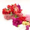 Flor fresca, clavel