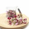 Pelargonium mini liofilizada con bote