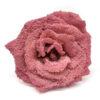 Rosa mini cristalizada teñida